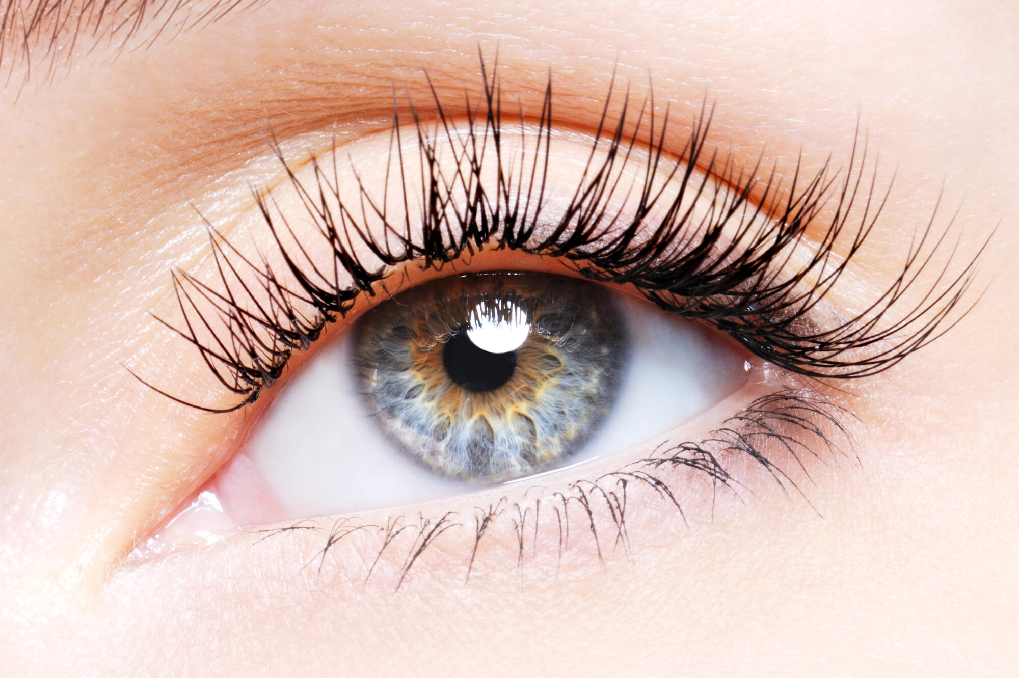 Få længere øjenvipper med castorolie - Ricinusoliens