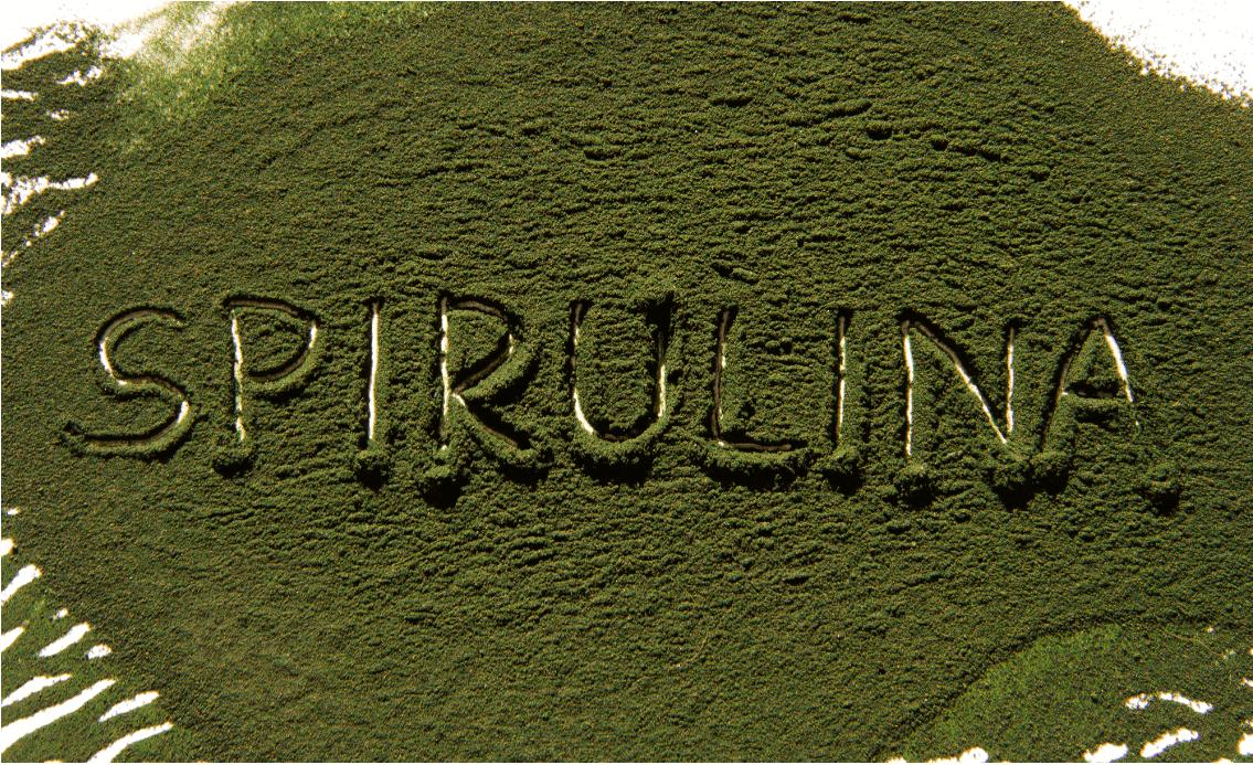Hvad er Spirulina
