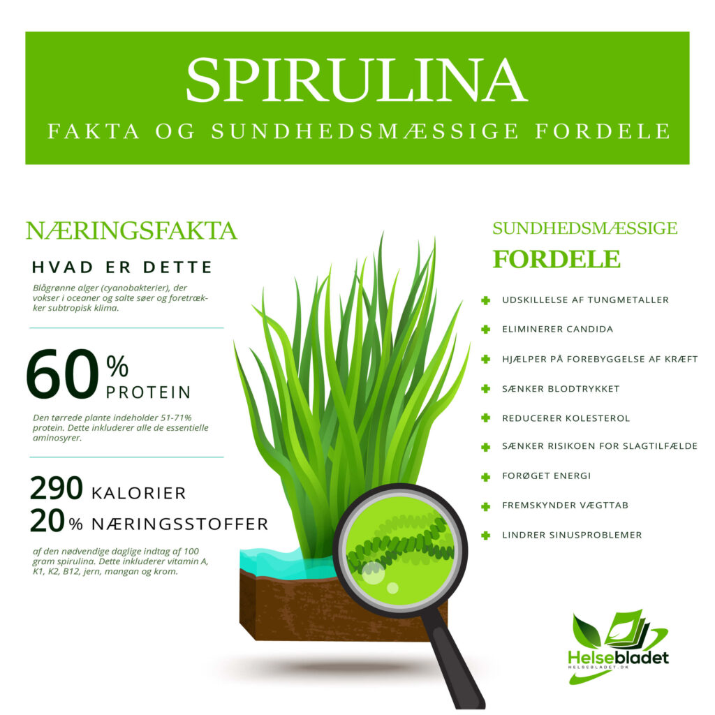 Spirulina: Fakta og sundhedsmæssige fordele