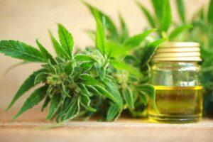 CBD olie naturmedicin mod angst og stress